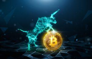 Bull and bitcoin